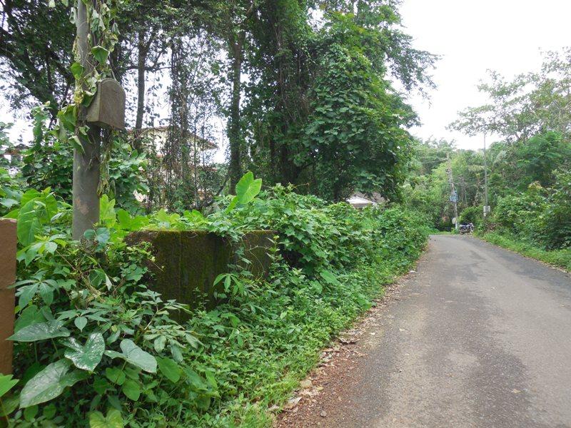 245sqmt Plot for Sale in Socorro, Porvorim, North-Goa. (24.50L)