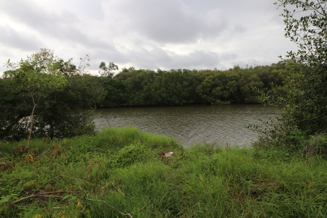 1080sqmt River touch Plot for Sale in Bambolim, North-Goa.(3.24Cr)