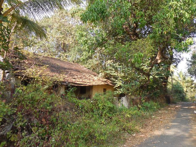 325sqmt Settlement Plot for Sale Corjuem-Aldona, North-Goa.(29.25L)