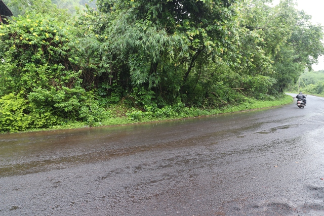 1575sqmt Plot with Sanad for Sale in Moira-Mapusa, North-Goa.(2.52Cr)