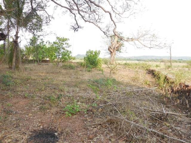735sqmt plot Fieldview for Sale in Pomburpa, North-Goa.(1.17Cr)
