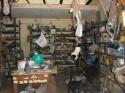 Shop 30sqmt for Sale in Mapusa, North-Goa (36L)